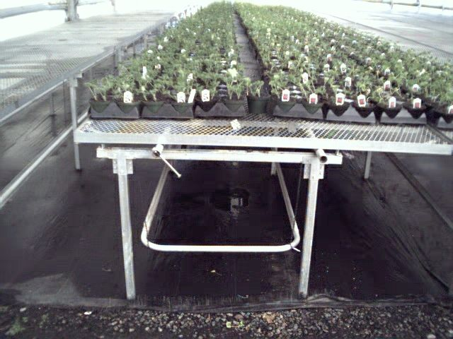 Linx Greenhouse Systems Hot Water Radiant Heat