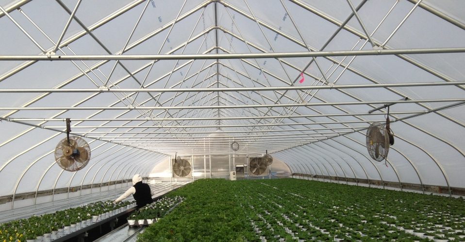 Greenhouses You Can Afford<p class='marqueetext'>We have prices you can afford. The LINX line of greenhouses has been designed for entry-level growers or for existing growers who are looking for an inexpensive expansion.</p>
